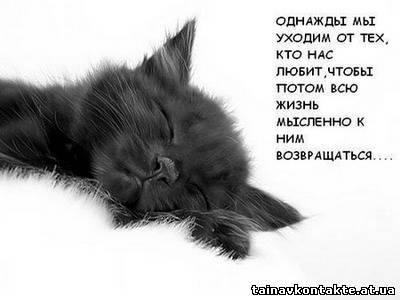 Фото и картинки для вконтакте